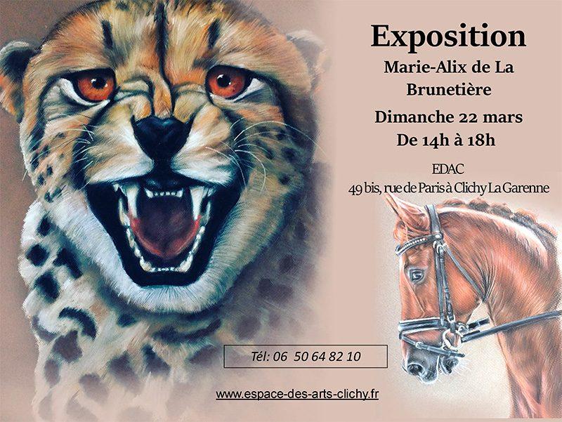 L'association EDAC a le plaisir de vous convier à l'exposition de pastelsde Marie Alixle dimanche 22 mars de 14h à 18h